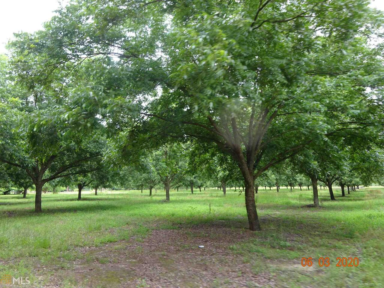 View Slide 0 for listing 8809249