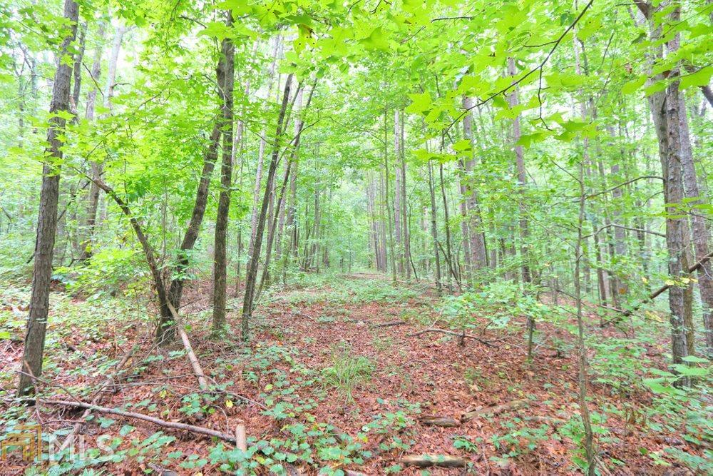 View Slide 12 for listing 8842998