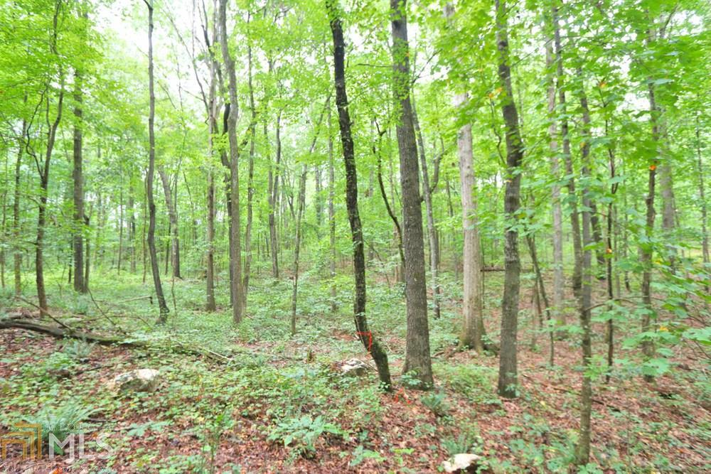 View Slide 15 for listing 8842998