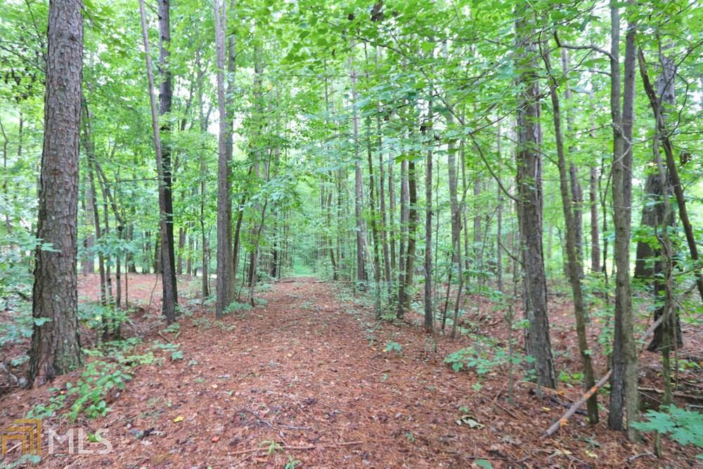 View Slide 3 for listing 8842998