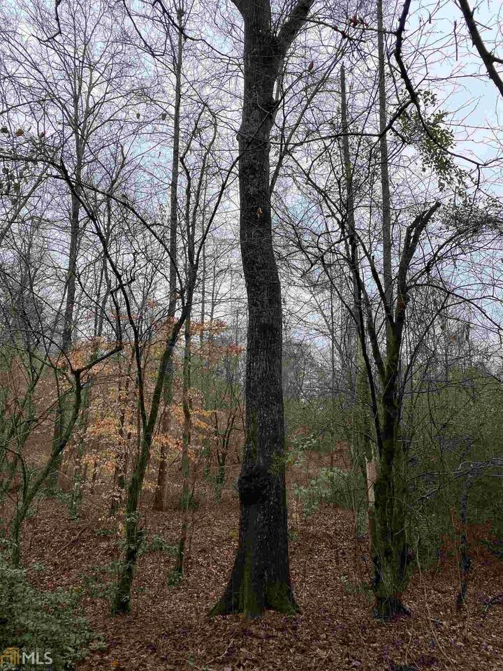 View Slide 12 for listing 8914967