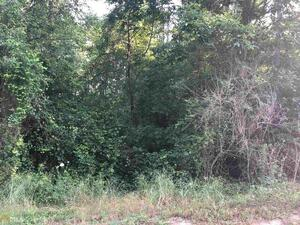 View Slide 2 for listing 8986651