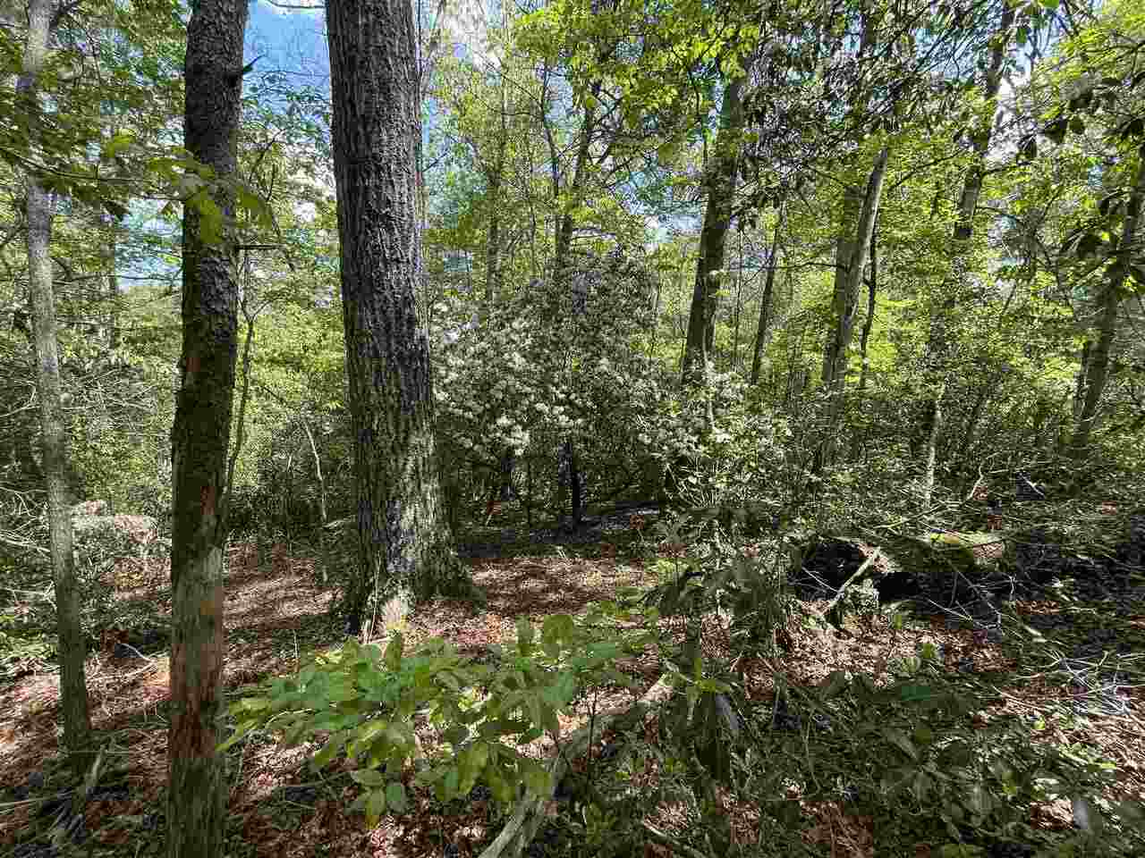 View Slide 9 for listing 8978793
