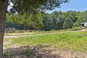 View Slide 48 for listing 9043151