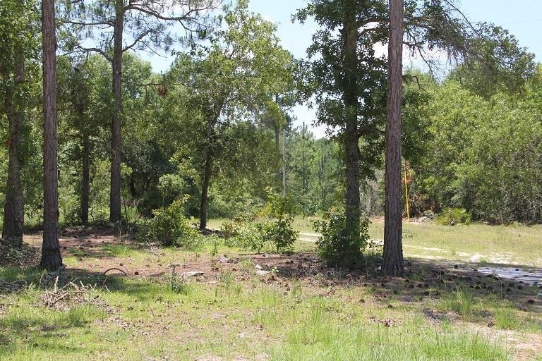 View Slide 20 for listing 8998611