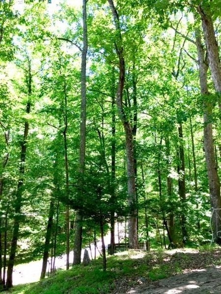 View Slide 13 for listing 9009307